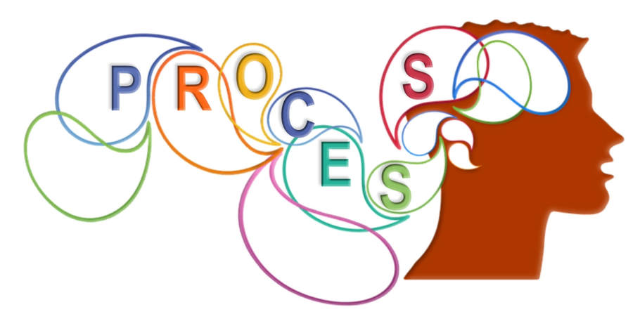 process miracles design consultants